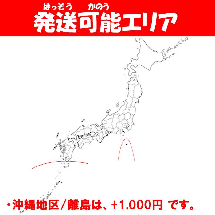 発送可能エリア,沖縄・離島+1,000円