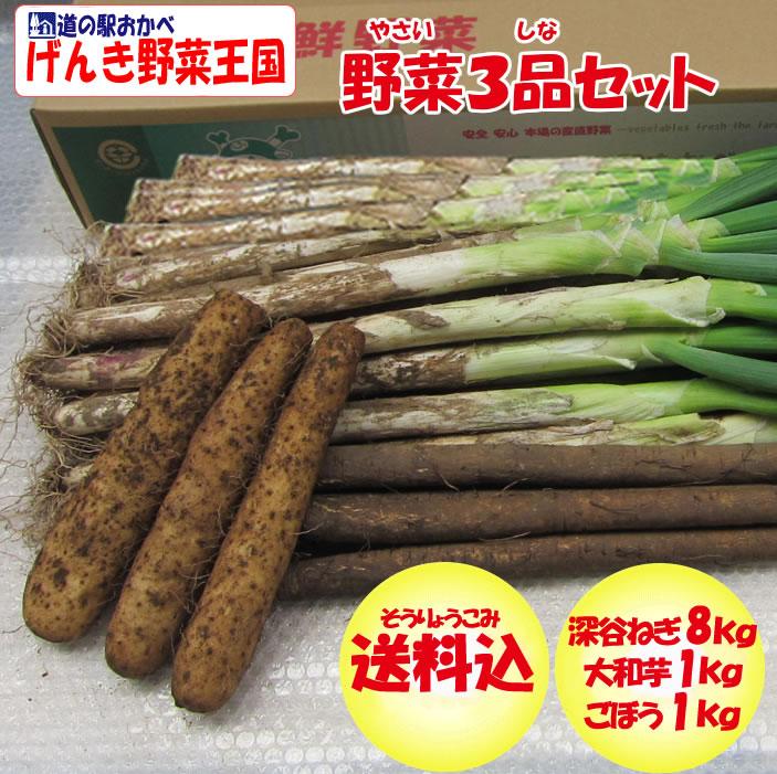 野菜セット3品