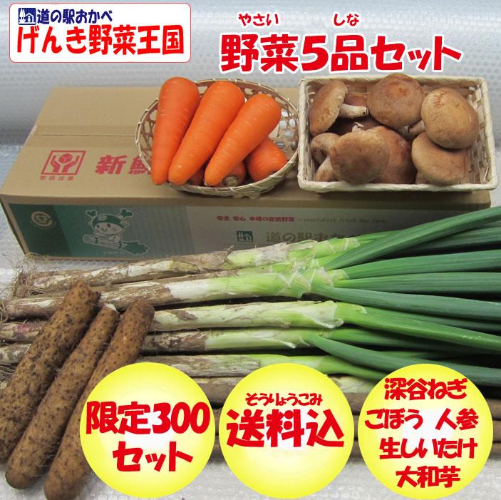 野菜セット5品